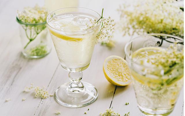 Primrose+cocktail+recipe+queens+favourite.png