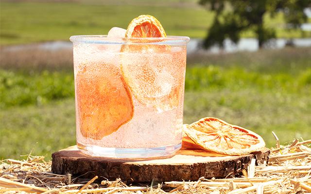 craft-gin-club-perfect-gin-tonic-july-2019.jpg