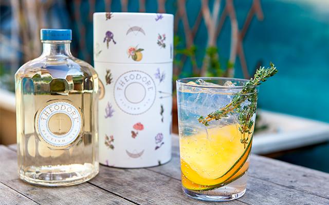 Image:  Theodore Pictish Gin