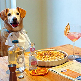 It's not all about DRINKING gin, @theginjudge took on this month's boozy bake to create a delicious gin-fused Choc-Orange S'more Pie! Paws off, pup! ;)