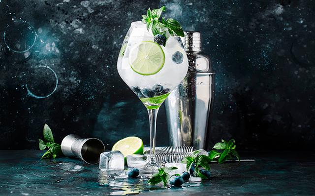 blueberry-mint-gin-tonic.jpg