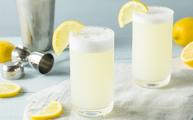 gin-fizz-cocktail.jpg