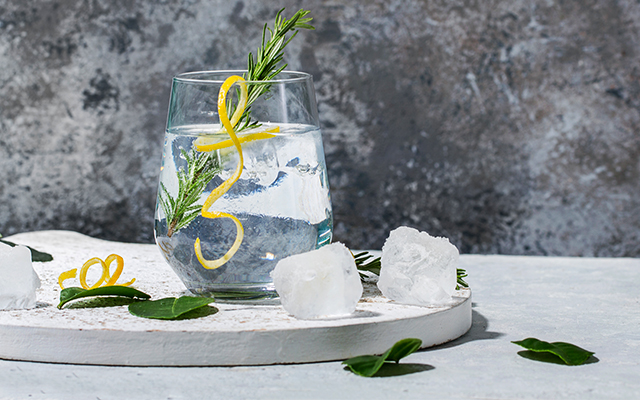 classic-gin-tonic-lemon-twist.jpg