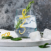 GIN-TONIC-SMALL-SQUARE.jpg