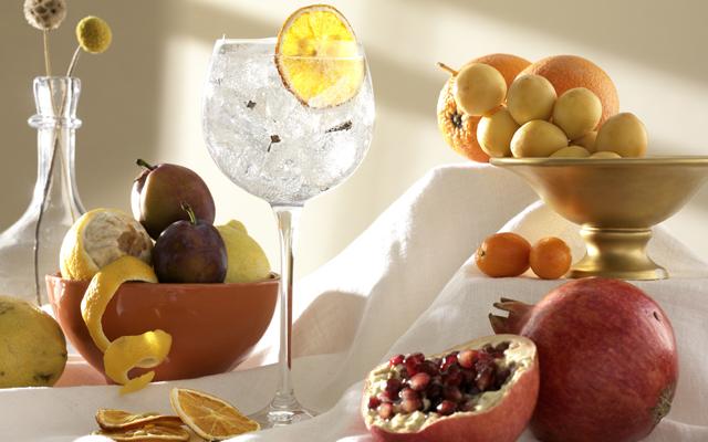 gin+1689+perfect+gin+and+tonic.jpg