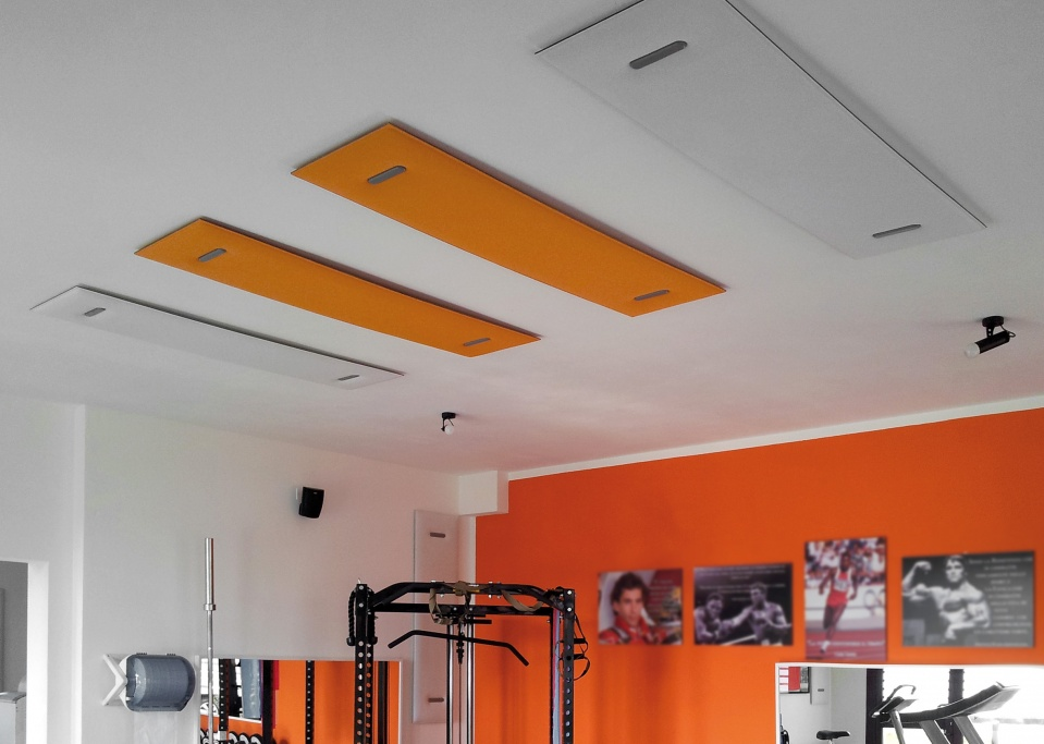 mitesco-ceiling-application-2.jpg