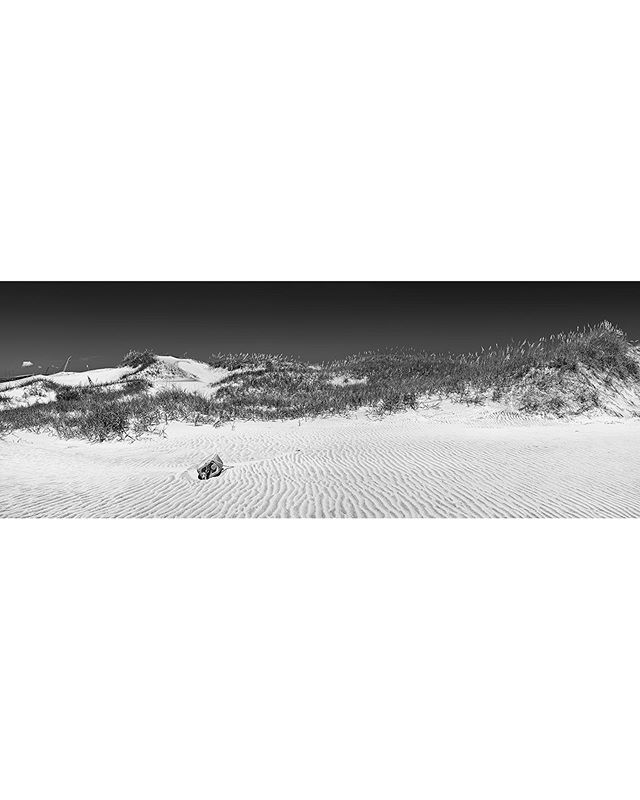 Dune field panorama on Pea Island from a few months back. • • • • • #subjectivelyobjective #anotherplace #documentingspace #bnwsouls #sombrebw #aintbad #bnw_drama #bnw_demand #awesomebnw #noir_shots #bnw_greatshots #bnw_creatives #bnw_capture #tv_hiddenbeauty #abandoned_junkies #remnantmagazine #thought_landscape #bnwminimalismmag #gominimalmag #bnw_minimalism #peaisland #obx #landscape_lover #landscape_captures #newtopographics #flakphotoplaces