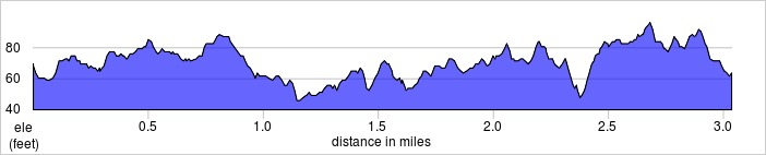 elevation_profile - Hackney Marshes.jpg