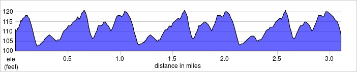 elevation_profile - Tooting Common.jpg
