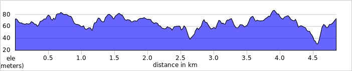 elevation_profile Beeches 5k.jpg