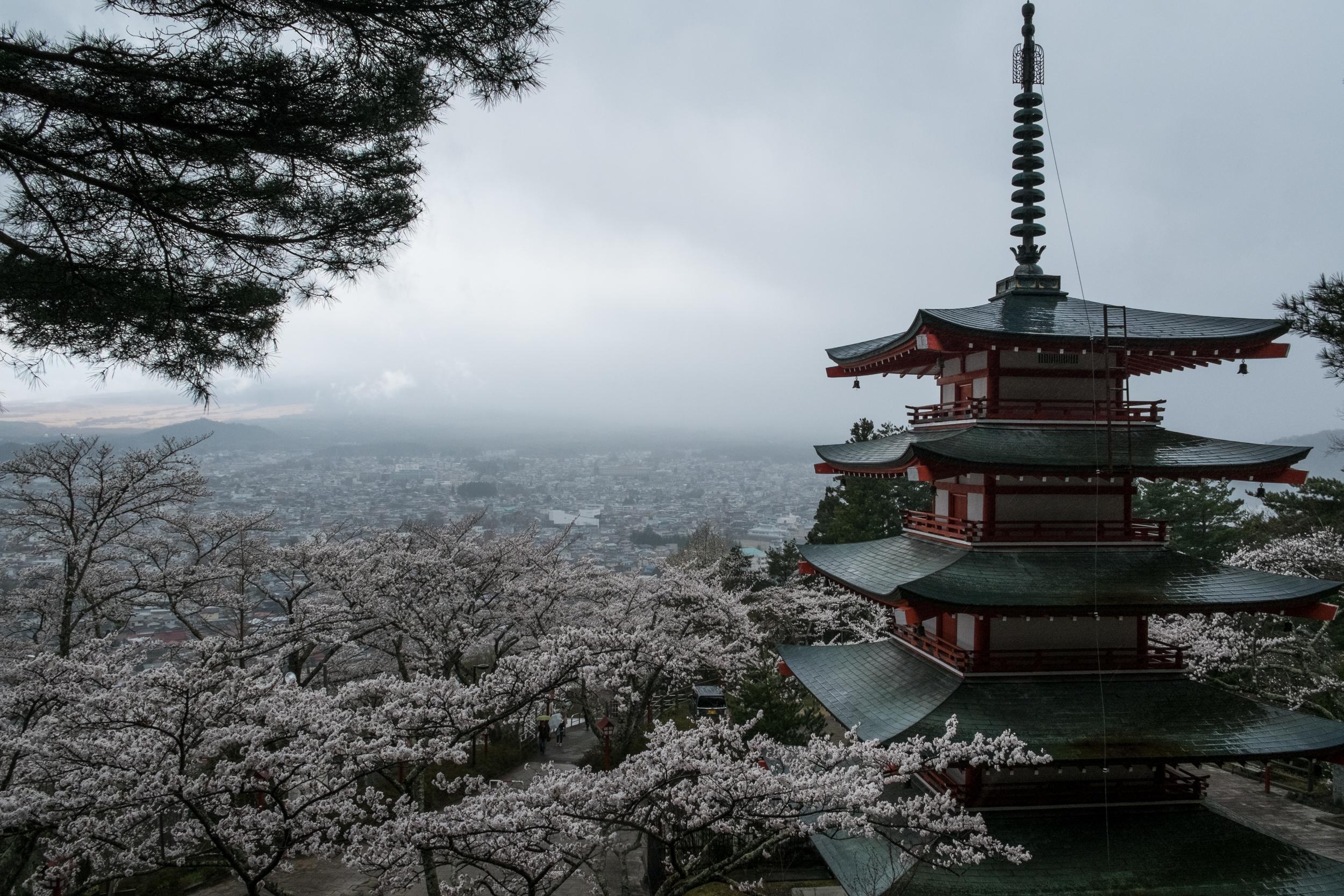 Superbe vue de Fuji...!