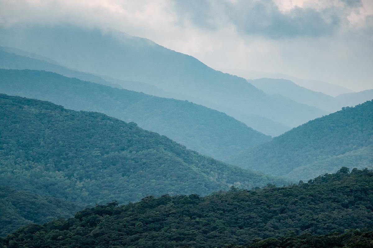 18-07-22---Montagnes-Mudan-(Taiwan).jpg