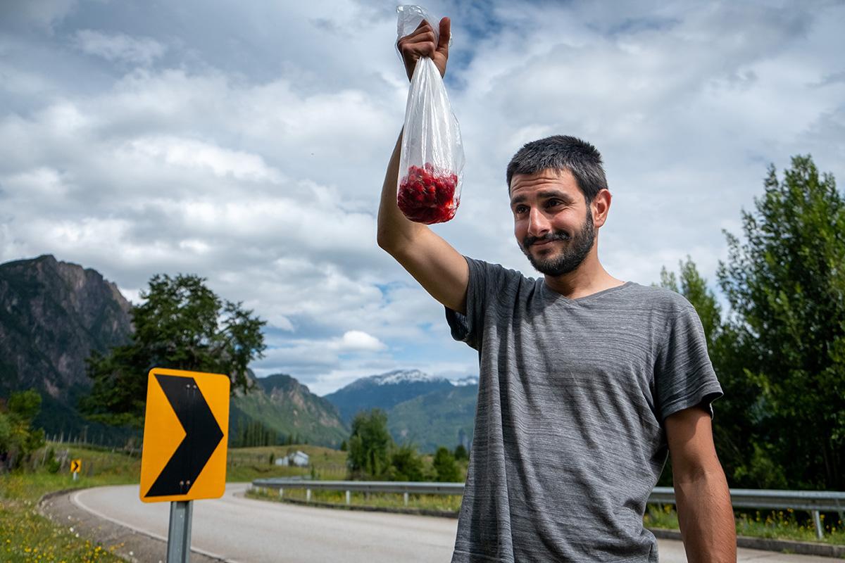 Davide, fier d'une récolte de framboises sauvages.