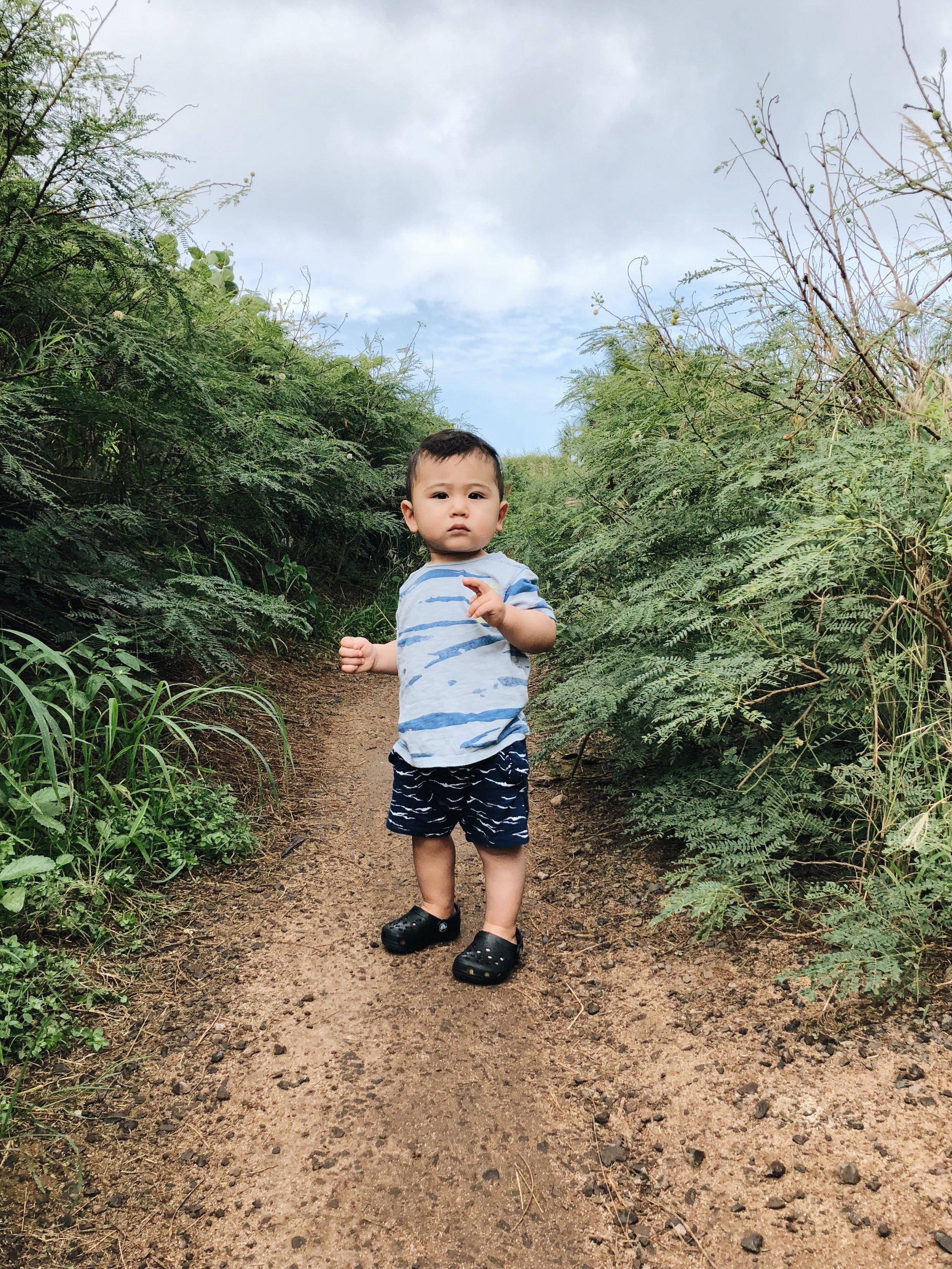 miles trail