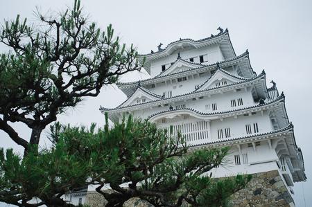 Himeji castle, gleaming after recent resotration