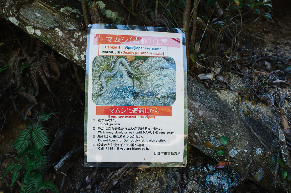 Deadly snakes!! Warning signs up Mt Misen