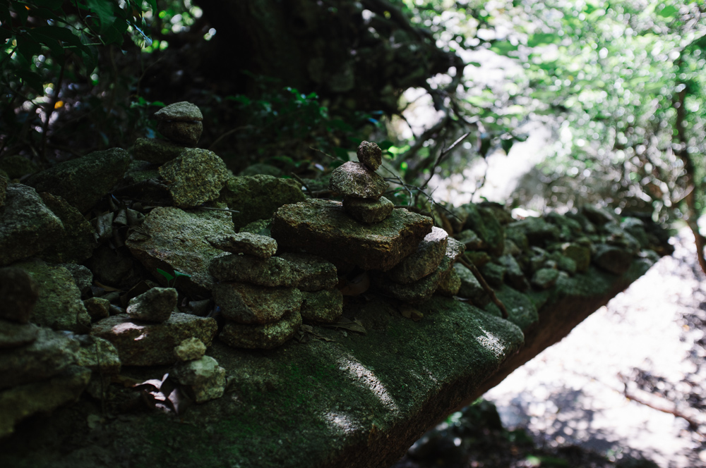 Small Stone piles (cairns) mark the way.