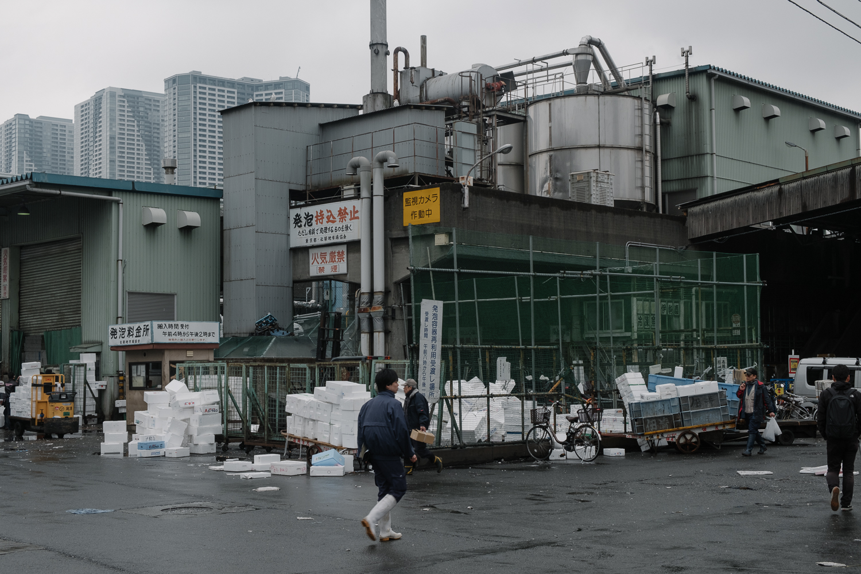 Brad_Merrett_Tsukiji-14.jpg