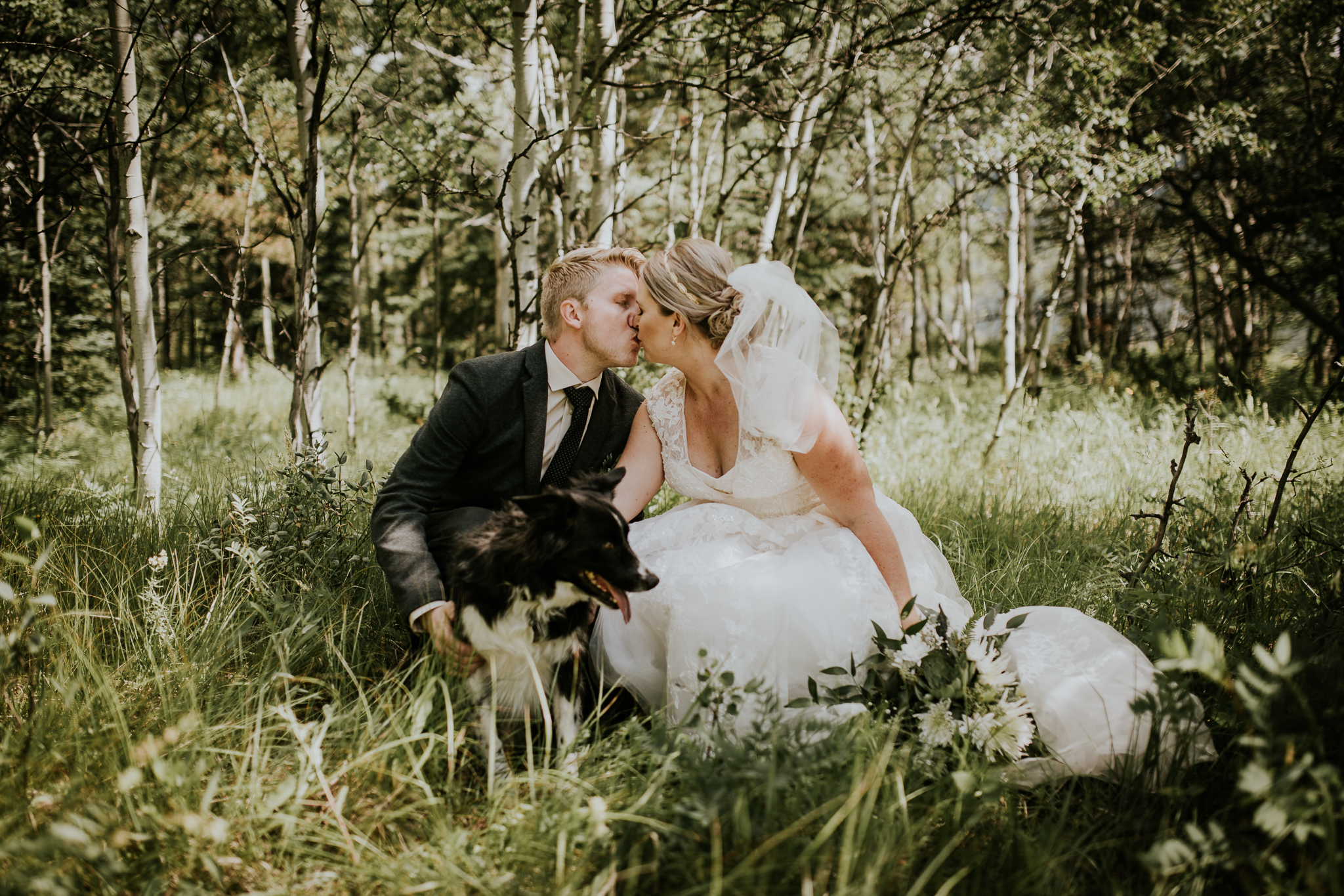 Bride and groom and dog kissing in tall grass at Delta Kananaskis