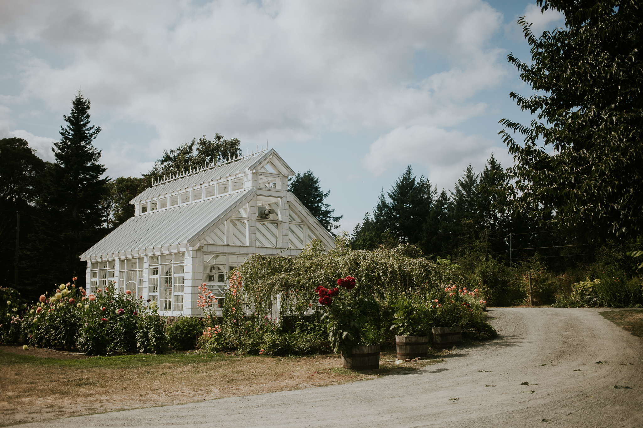 Starling Lane winery summer wedding venue with greenhouse Victoria BC