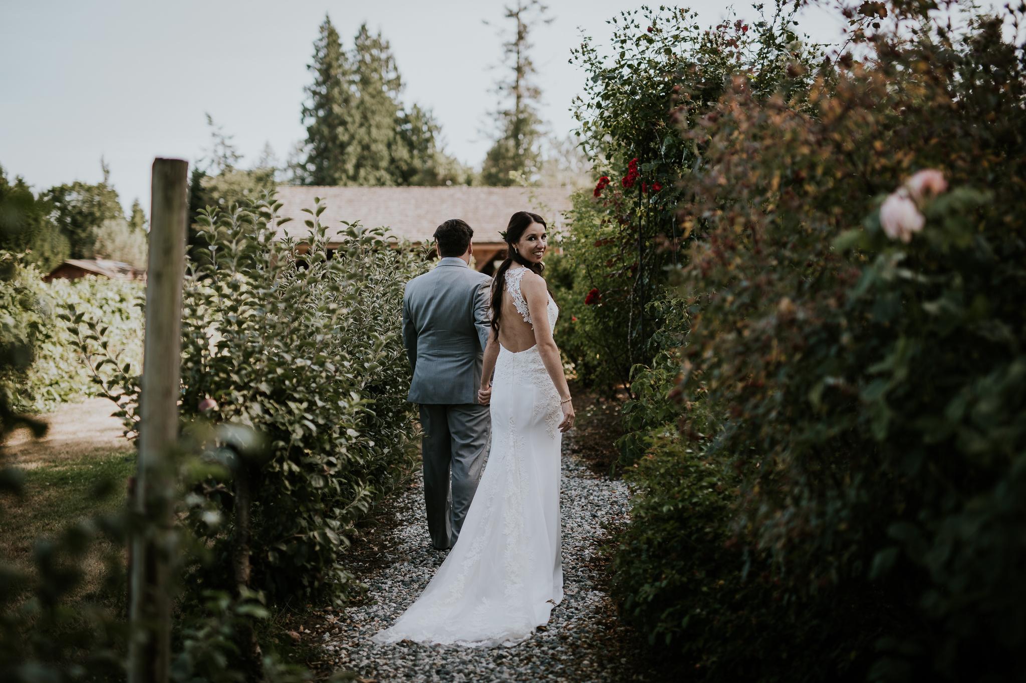 Bride and groom walking between rose bushes at vineyard Victoria BC wedding