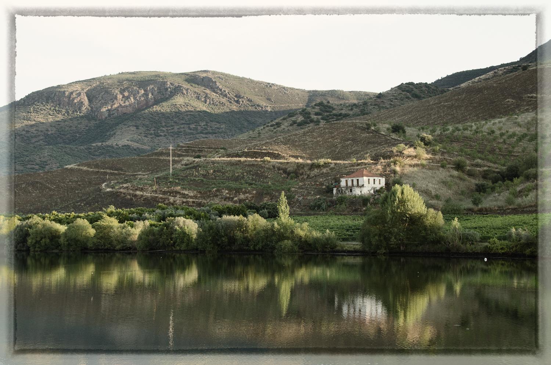 Quinta (Estate) on the Douro River