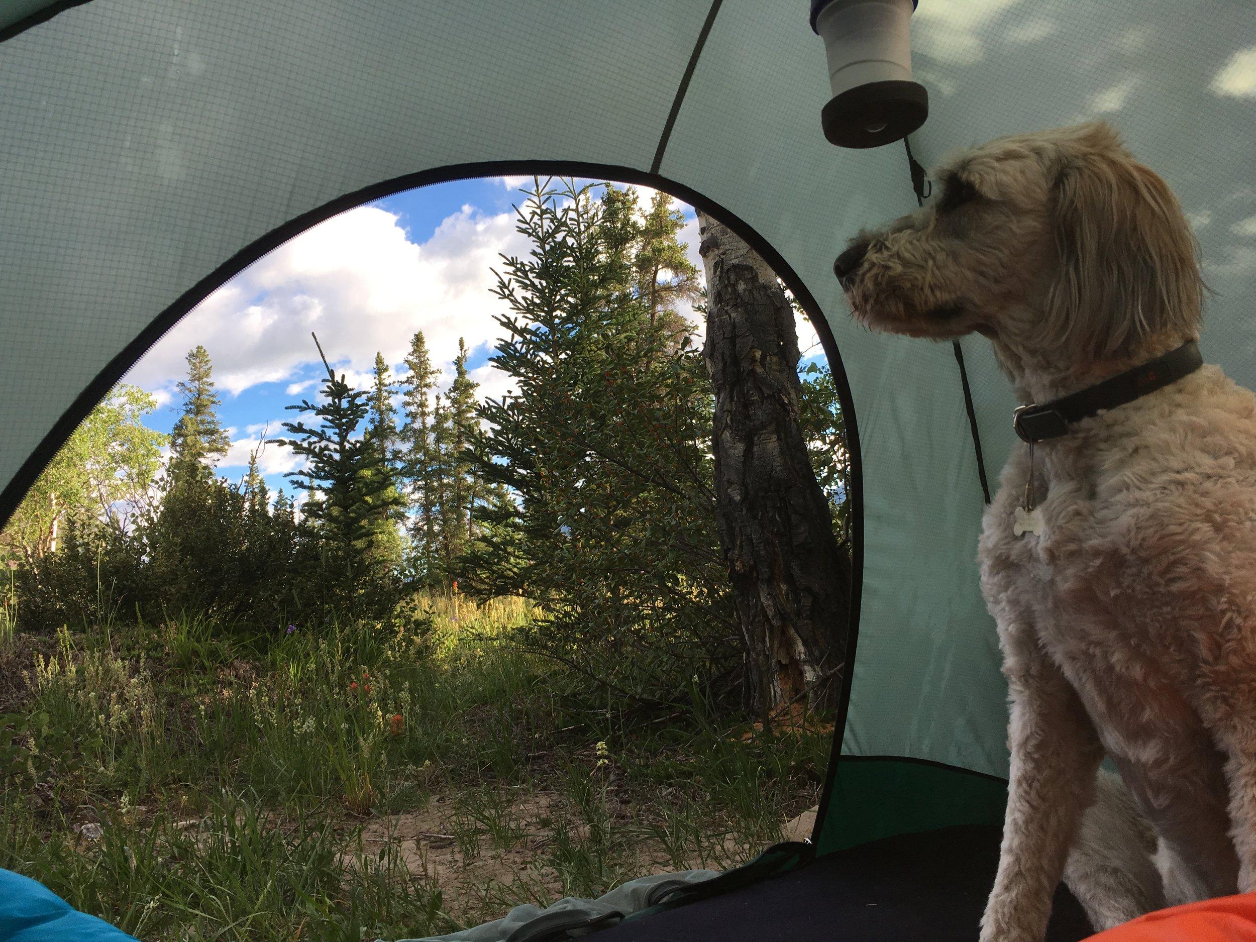 Camping 2018 045.JPG