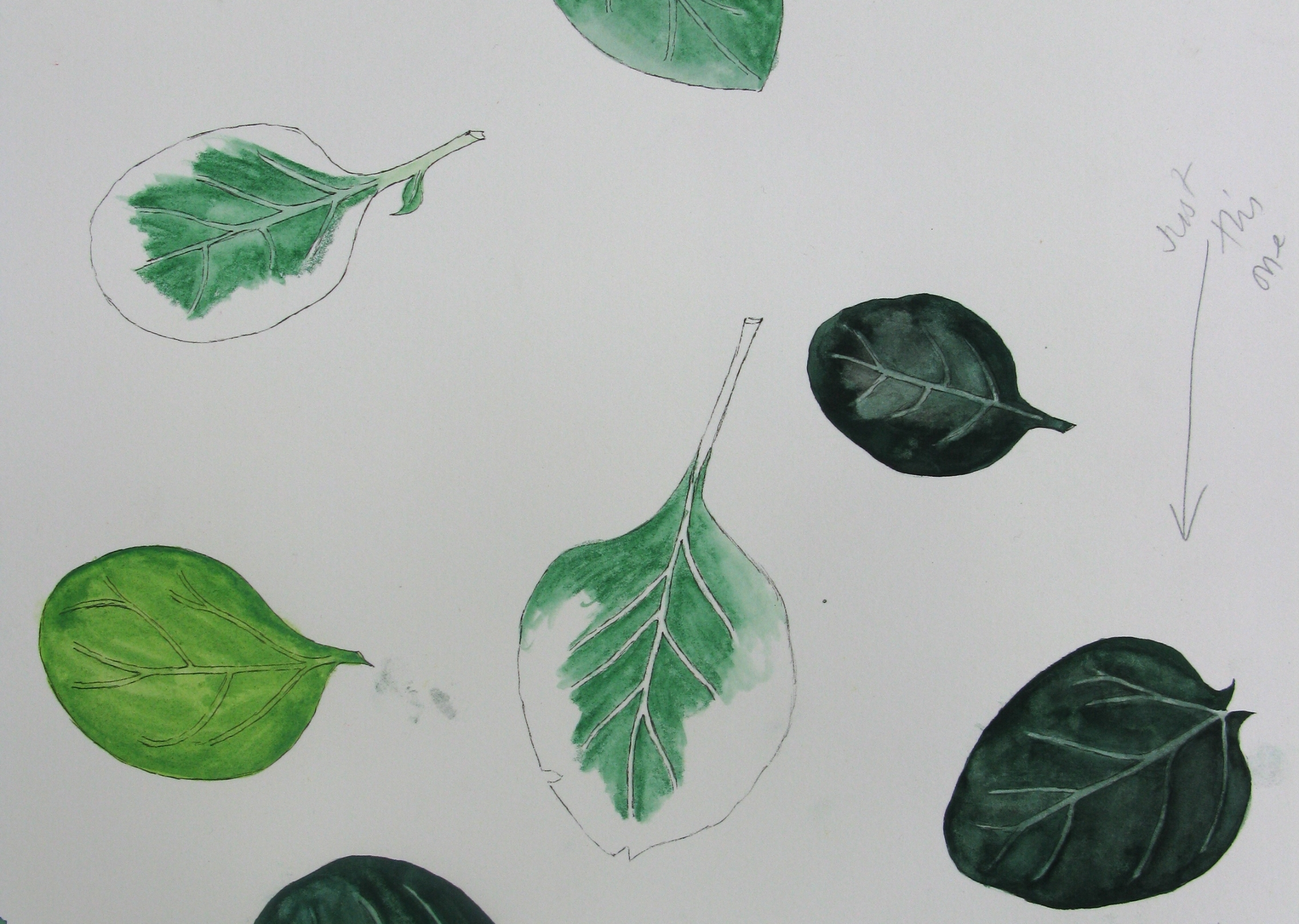 Mollie Katzen's Spinach-Basmati Soup with Yogurt