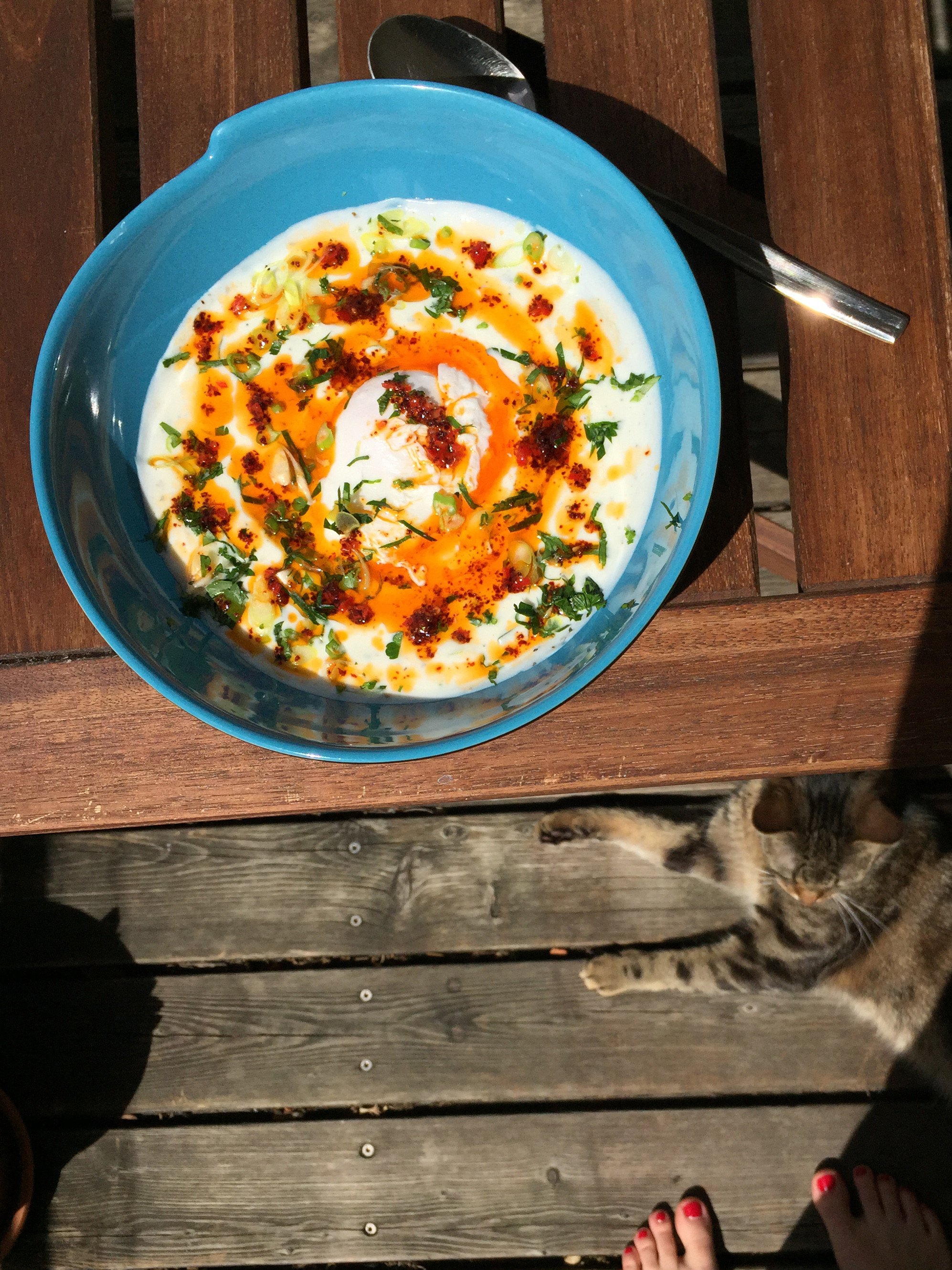 In Austria, Enjoying Cilbir, or Turkish Poached Eggs with Yogurt