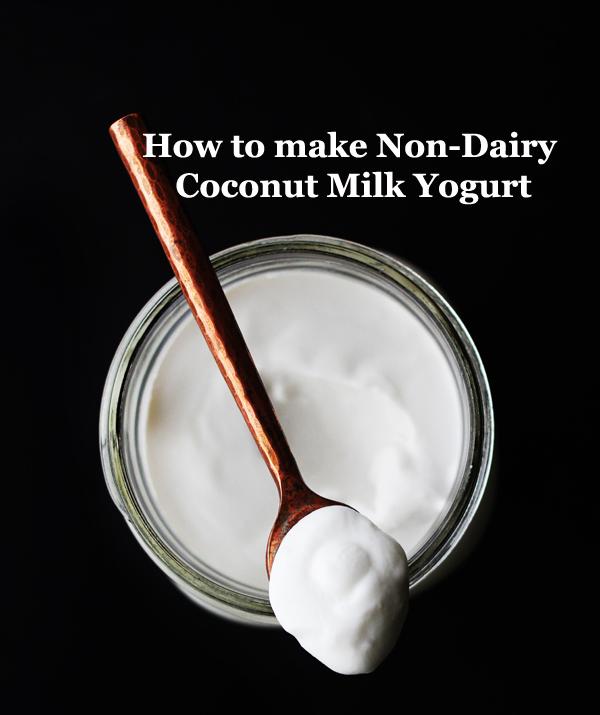 How to Make Non-Dairy Coconut Milk Yogurt