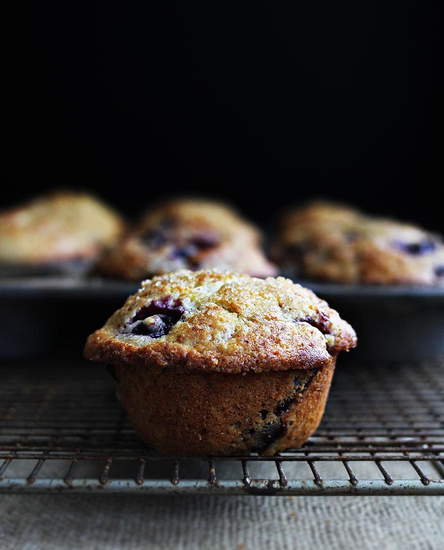 Cherry Almond Yogurt Muffins with semolina and orange |http://www.teamyogurt.com/