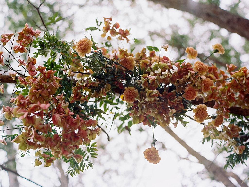 jacksonville-wedding-photographer-forest-elopement-22.jpg