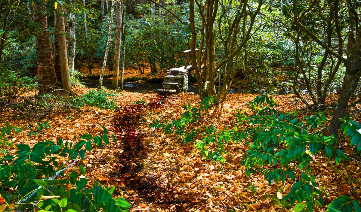 Bill Giles.Path 2-2.jpg