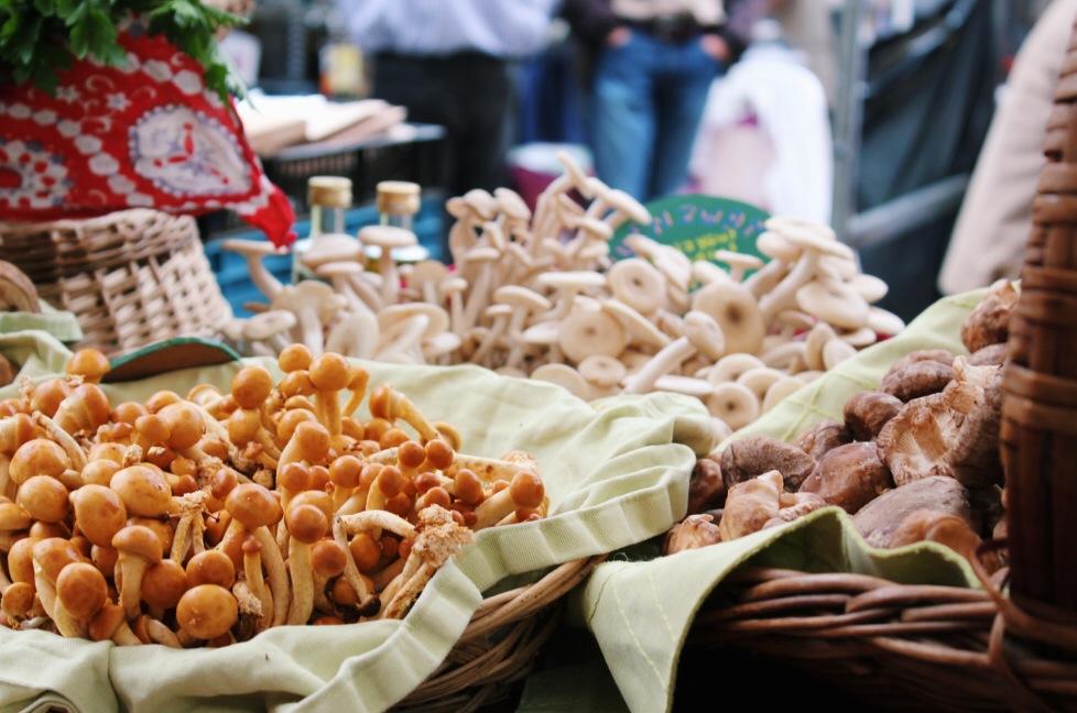 Prachtige en vast overheerlijke paddenstoelen op de Zuidermarkt. Gefotografeerd door Ingrid.