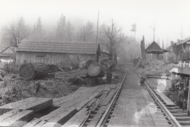 A dog stands on the tracks next to a line worker, somewhere deep in the Cascade Mountains.