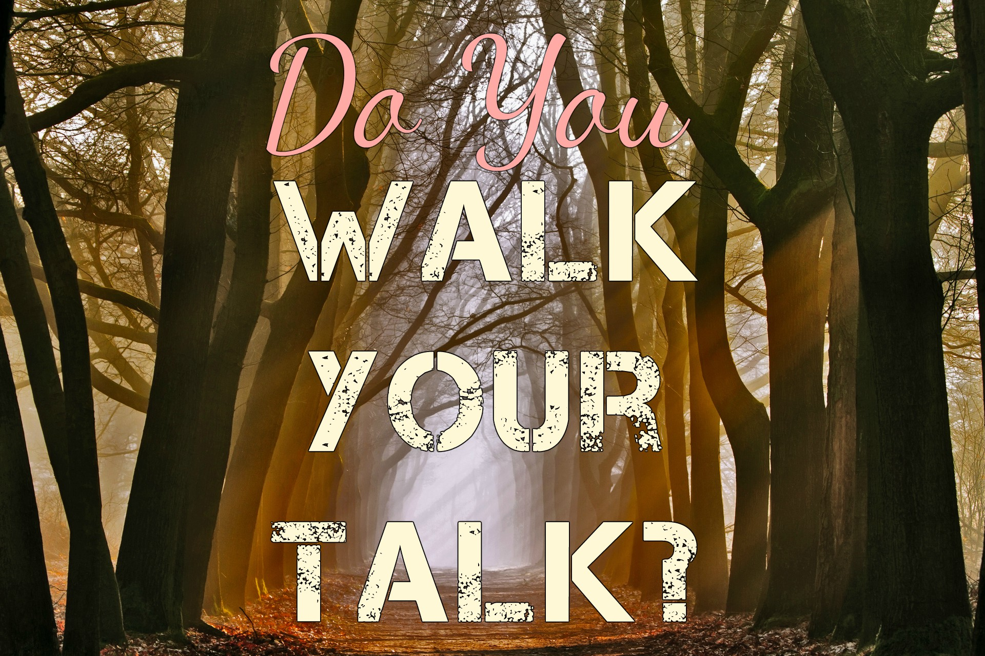 walk-the-walk-talk-the-talk-251231.jpg