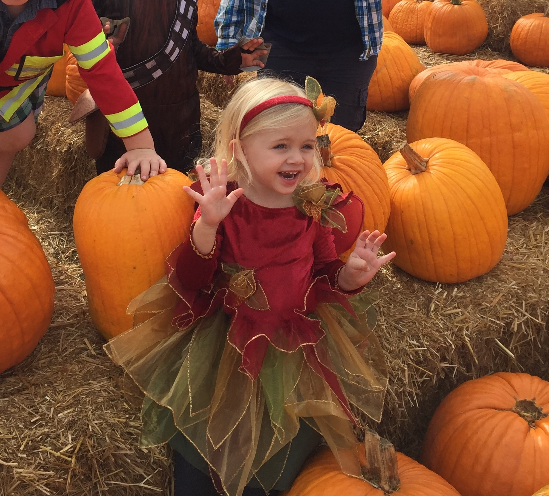 My very observant Grand-niece, Olivia, enjoying Fall Harvest…
