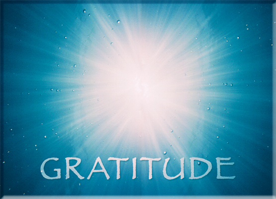 Gratitude for Barton Springs is Art of Heart! Light workers Love Light. Fine Art Photography