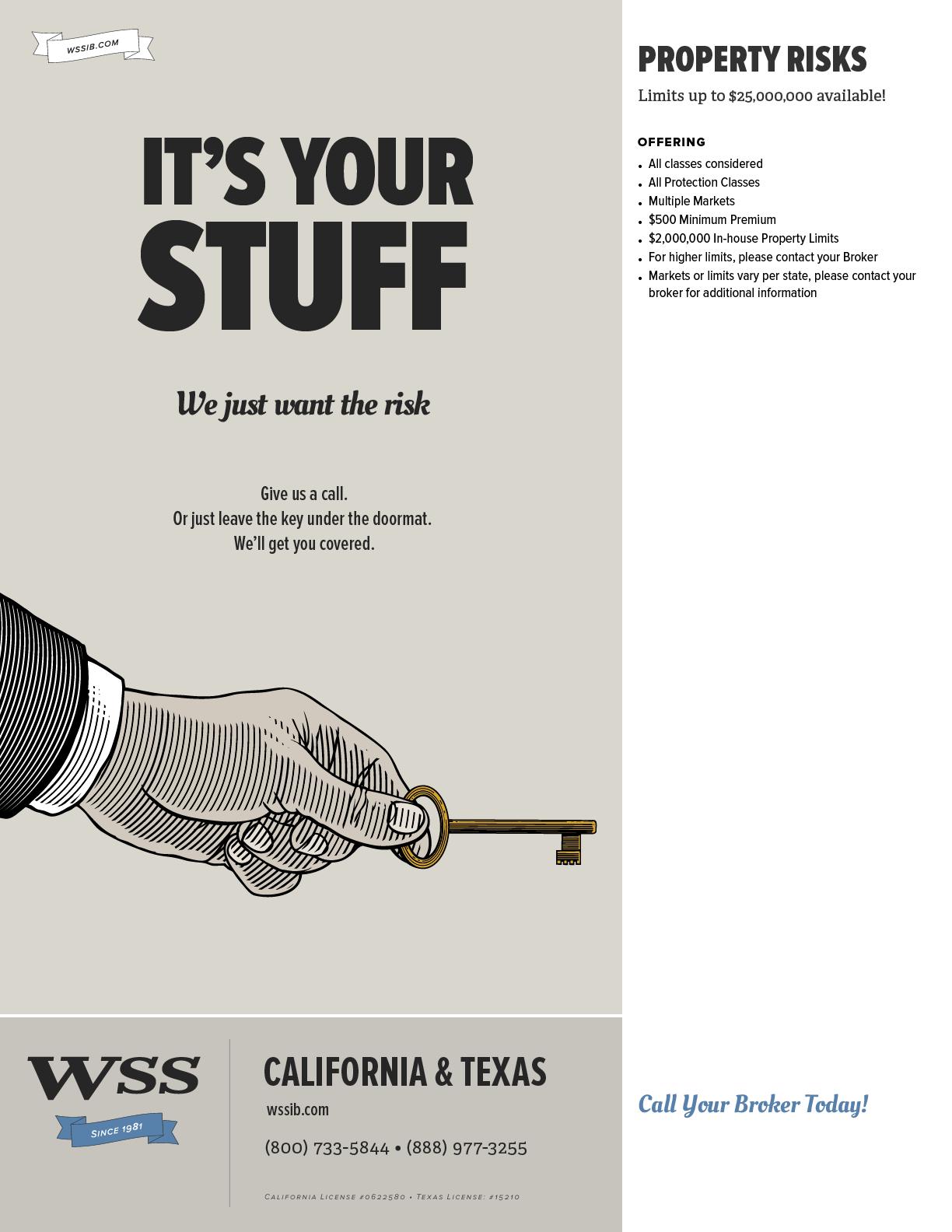 WSS-Flyer-PropertyRIsk.png