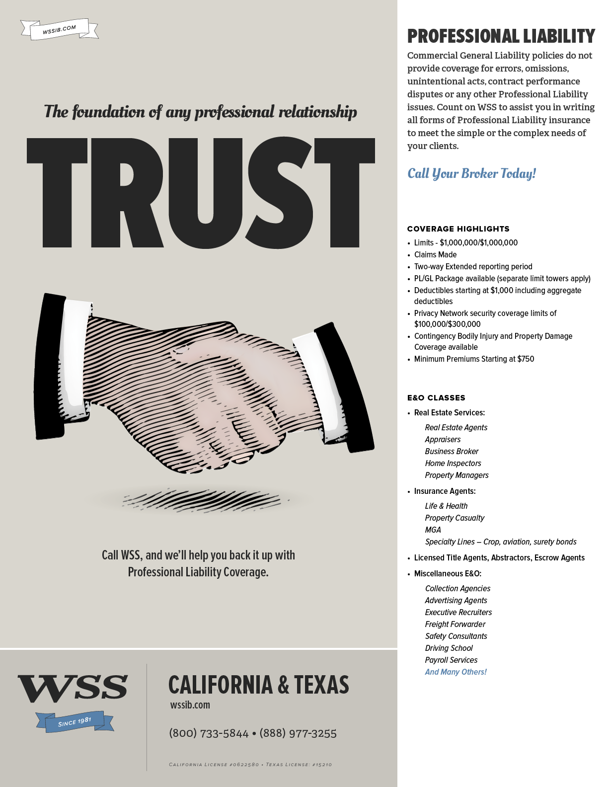 WSS-Flyer-ProfessionalLiability.png