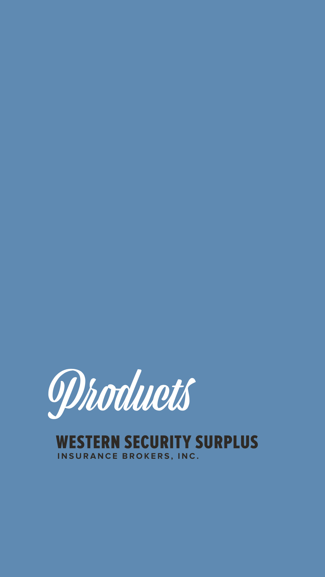 WSS-Products-Booklet.png