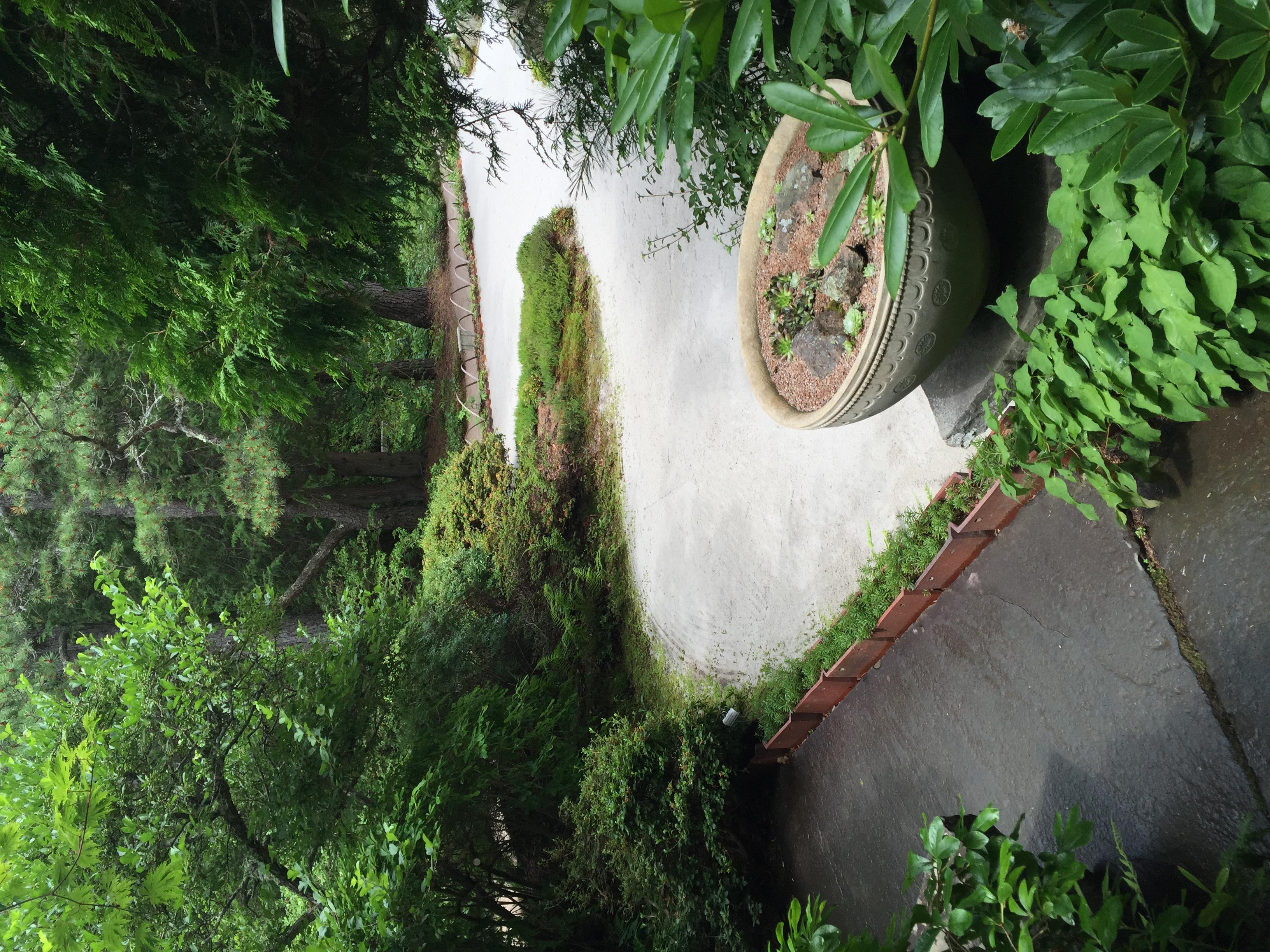 The edge of the stone garden at the Asticou Azalea Garden on MDI.