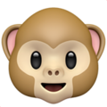 monkey-face_1f435.png