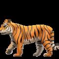 tiger_1f405.png