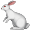 rabbit_1f407.png