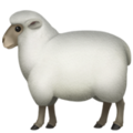 sheep_1f411.png