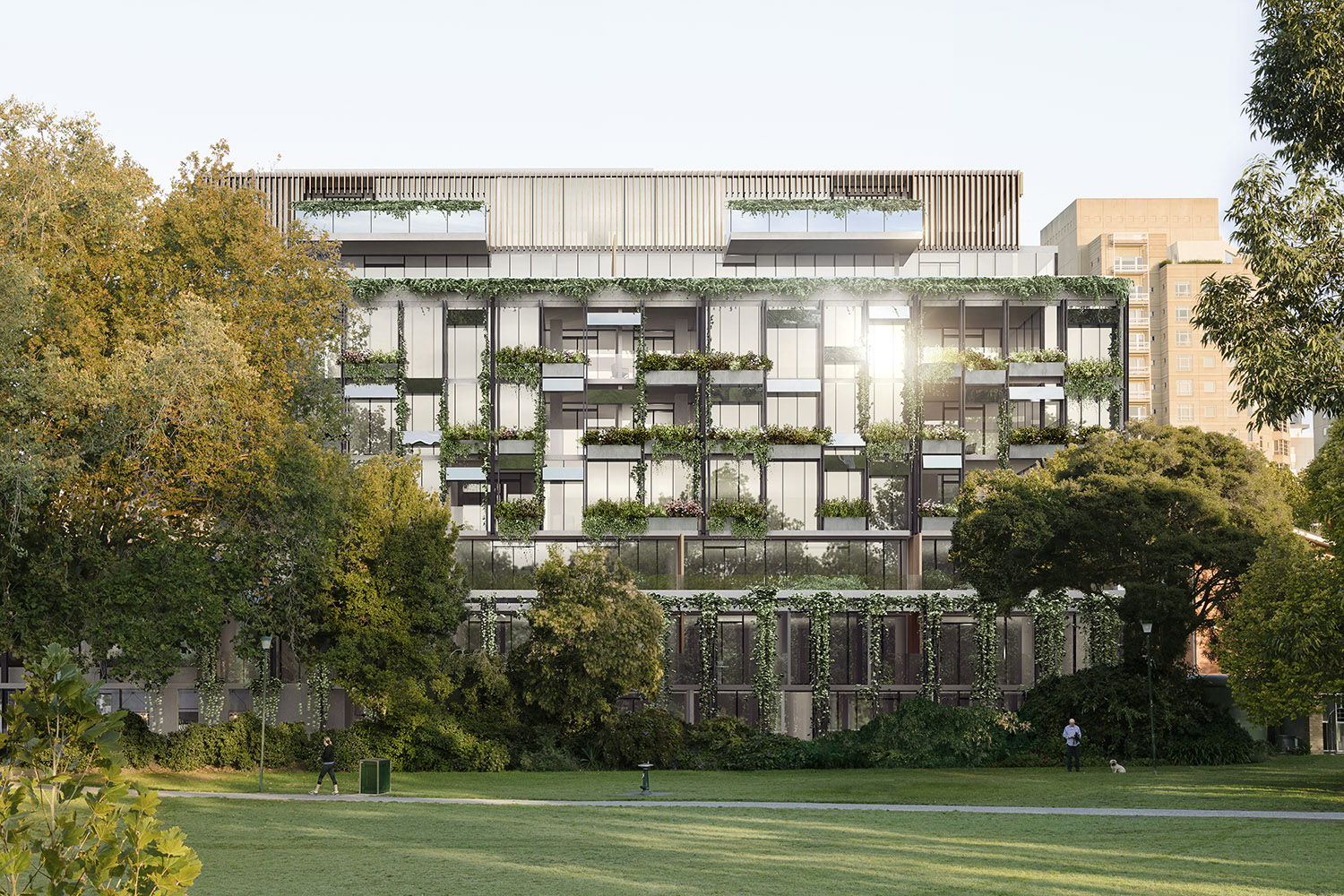 Rockley Gardens Toorak exterior render park side