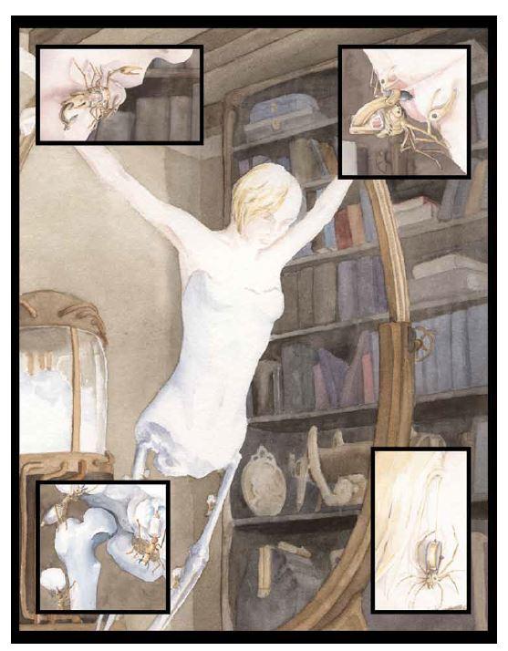 gc1full-faerie.JPG
