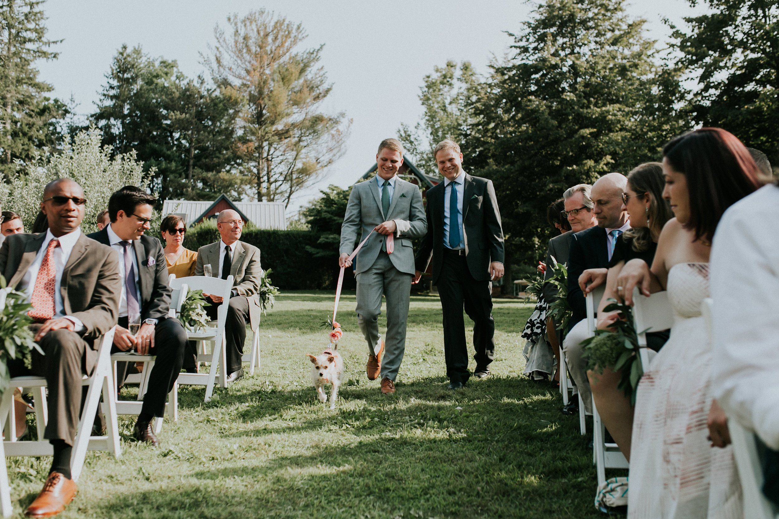 desiree hartstock - HERE'S HOW TO INCLUDE YOUR DOG ON YOUR WEDDING DAY