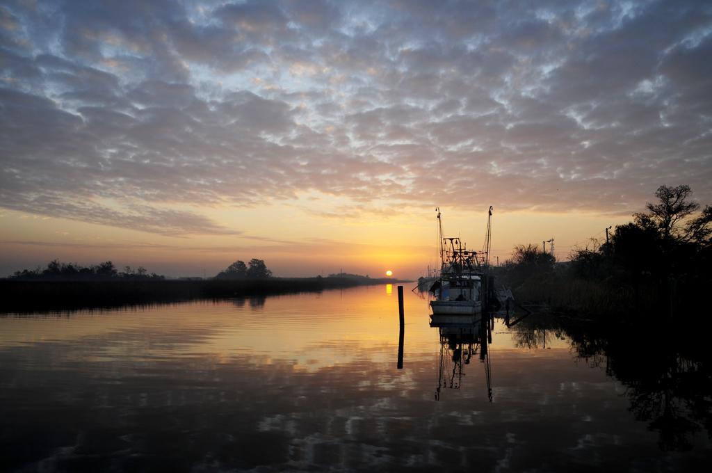 Sunrise on Scipio Creek